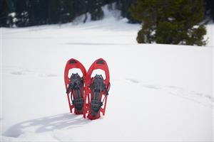 Old-fashioned Snow Shoes on Wood